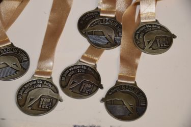 BerlinSwim 2016 - Medals